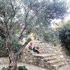 gwiazdy na Mykonos, Grecja
