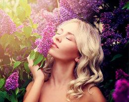 Jak uzyskać chłodny odcień na blond włosach?