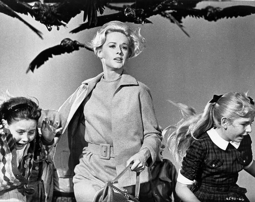 Alfred Hitchcock, Ptaki