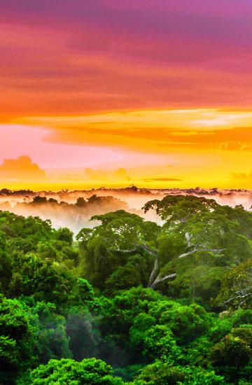 Amazonia cud natury