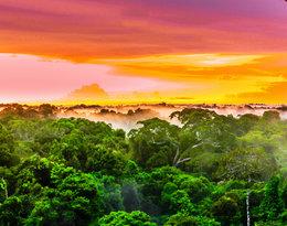 Amazonia, jedno z najpiękniejszych miejsc na świecie!