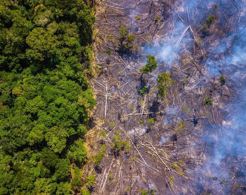 Amazonia, pożar