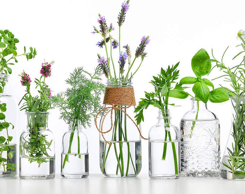 aromaterapia na koronawirusa