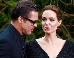 Choć żyją osobno, to Angelina Jolie wciąż musi dostosowywać się do Brada w pewnej kwestii...