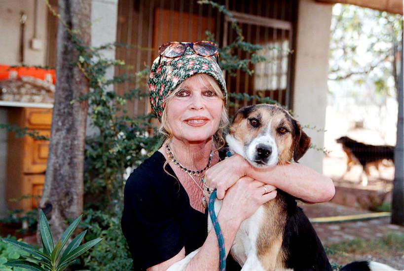 Brigitte Bardot, 2001 rok