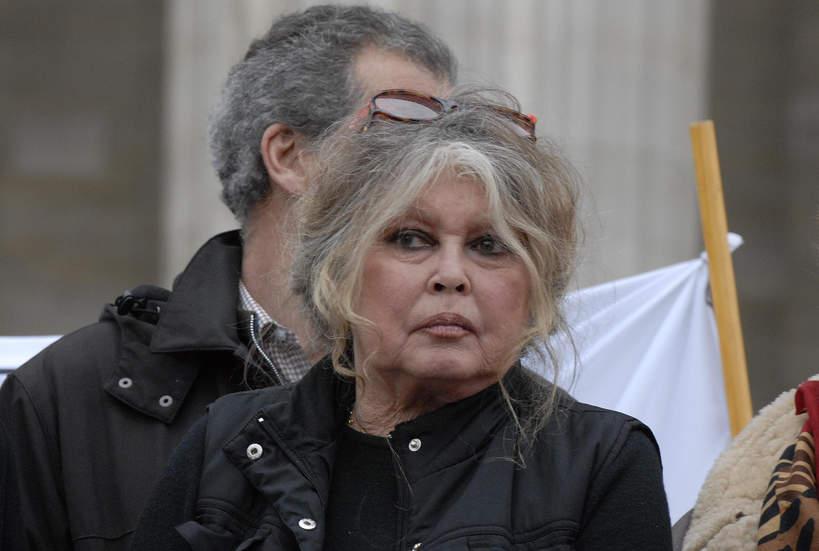 Brigitte Bardot, 2015