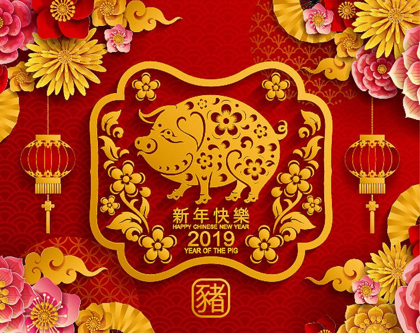 chiński rok świni