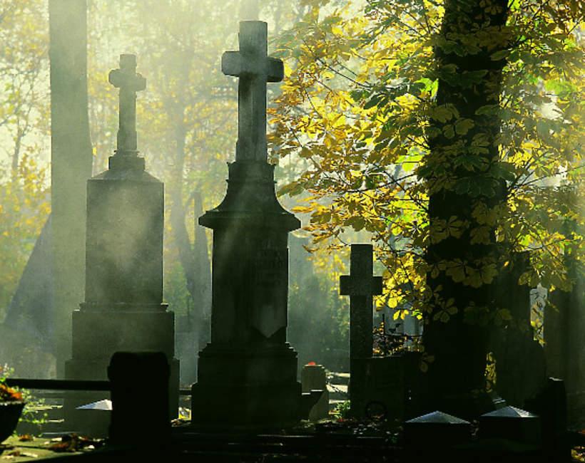 Cmentarz Powązkowski, Powązki