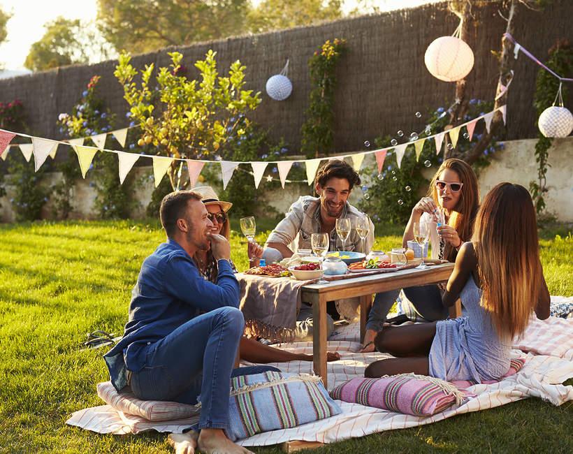 dafi-piknik