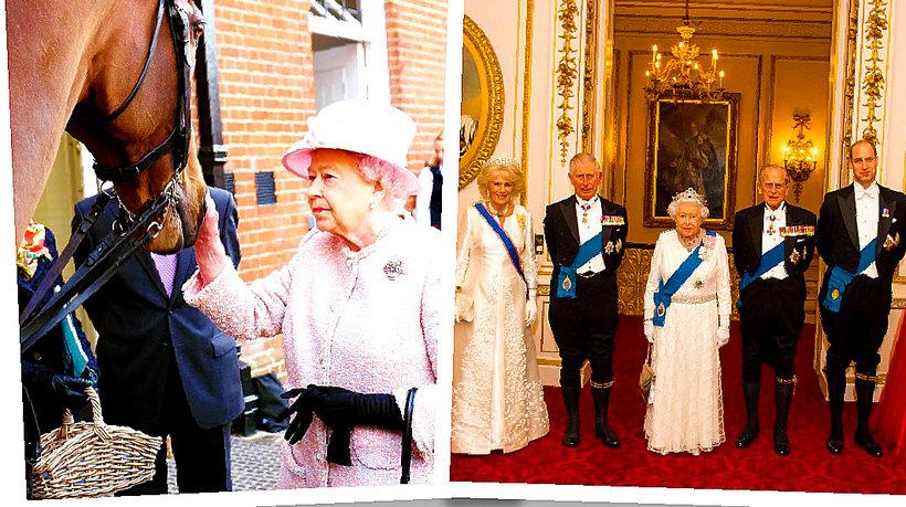 Dzień z życia królowej