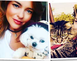 Pies Kingi Rusin ma swój Instagram. A jak inne gwiazdy kochają swoje zwierzaki?