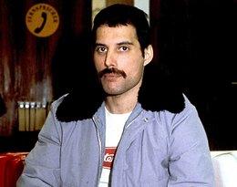 Ta fotografia Freddiego Mercury'ego jest hitem sieci! Artysta ma na niej niespełna rok