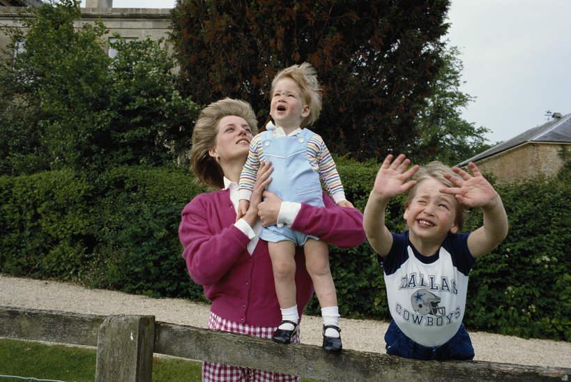 Harry i William jako dziecko, księżna Diana i książęWilliam, książęHarry