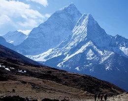 Choroba wysokościowa, ślepota śnieżna, odmrożenia... Mimo ogromnego ryzyka, wspinają się na ośmiotysięczniki. Co pcha ich na szczyt?
