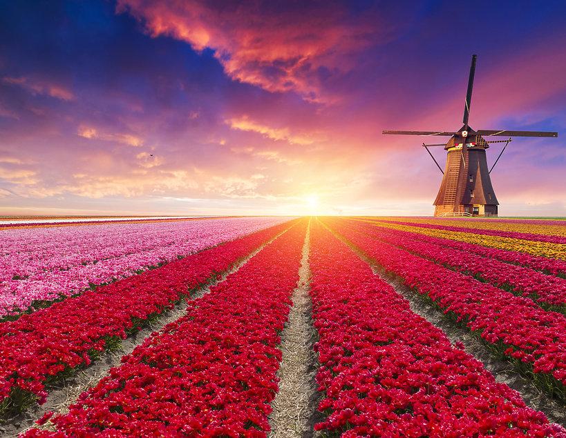 Holandia, zmienia nazwę 2019