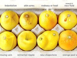 Kampania Know Your Lemons
