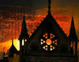 Cały świat składa hojne datki! Ile zebrano na odbudowę katedry Notre Dame?