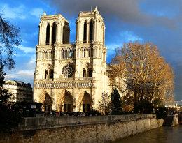 Pożar Notre Dame wstrząsnął światem! Jakie skarby skrywała katedra?