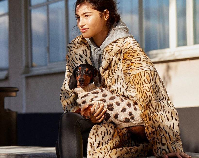 kolekcja H&M dla psów