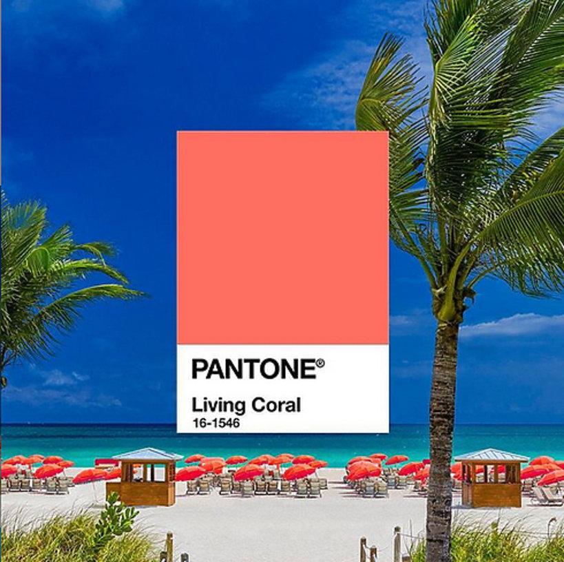 kolor pantone 2019