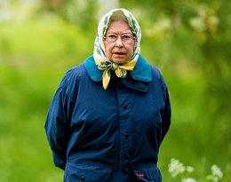 Elżbieta II gawędziła z amerykańskimi turystami, którzy jej... nie rozpoznali!