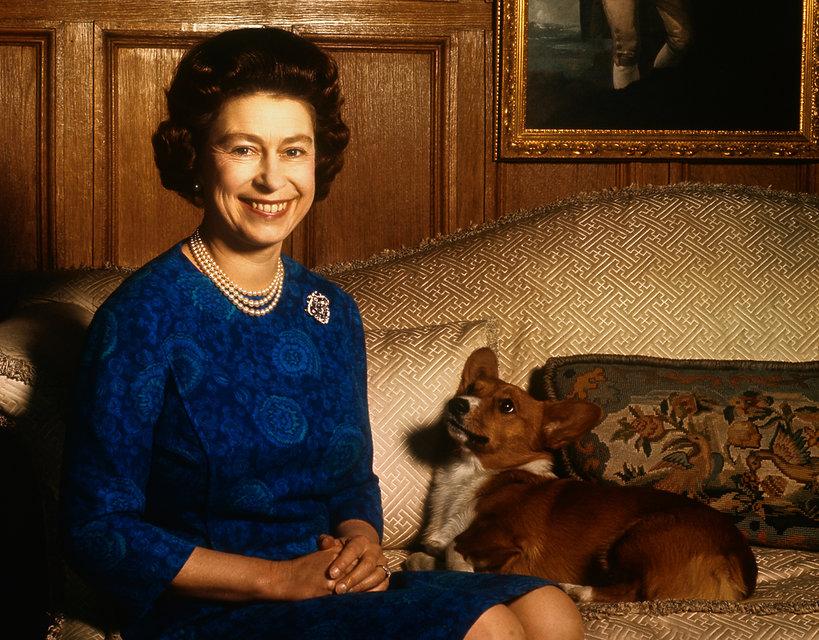 królowa Elżbieta II i corgi