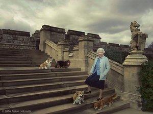 Królowa Elżbieta z psami