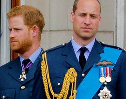 Książę William i książę Harry się pokłócili? Powodem sporu jest mały Archie...