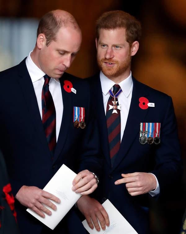 Książęta Harry i William odsłonią pomnik ku czci księżnej Diany