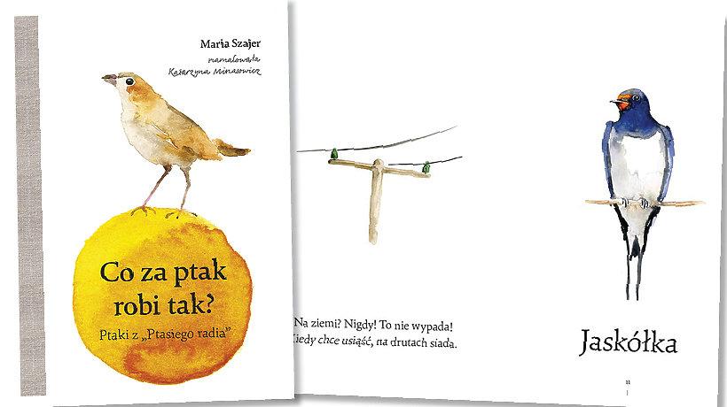 książka Co za ptak robi tak?