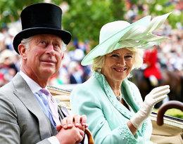 Dziś obchodzi 72. urodziny. Sprawdzamy, jak Camilla Parker-Bowles została księżną Kornwalii!
