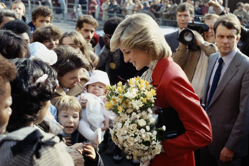 Księżna Diana, działalność charytatywna