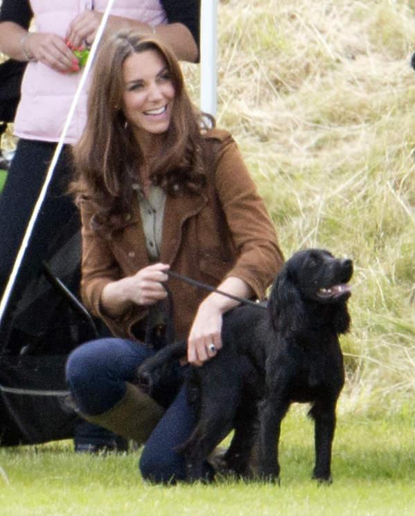 Księżna Kate pies Lupo