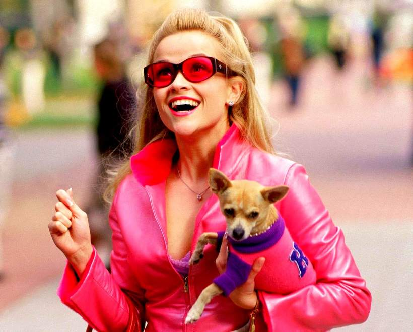 Legalna Blondynka, Reese Witherspoon, Elle Woods