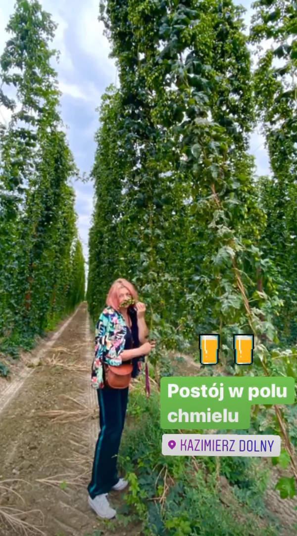 Małgorzata-Ostrowska-Królikowska-różowe-włosy-2020