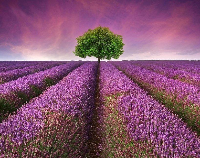 najpiękniejsze krajobrazy na świecie