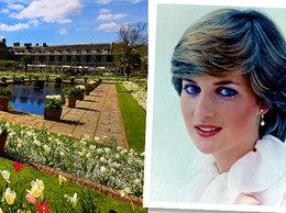 Ogrody w Pałacu Kensington