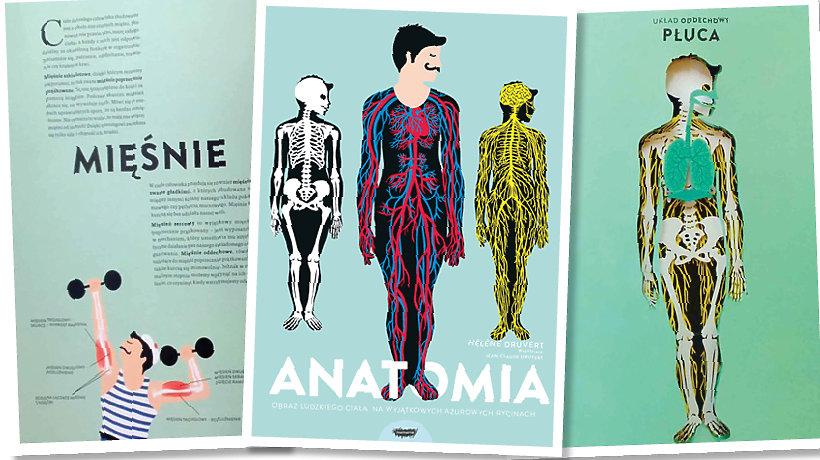 okładka książki Anatomia i dwie rozkładówki