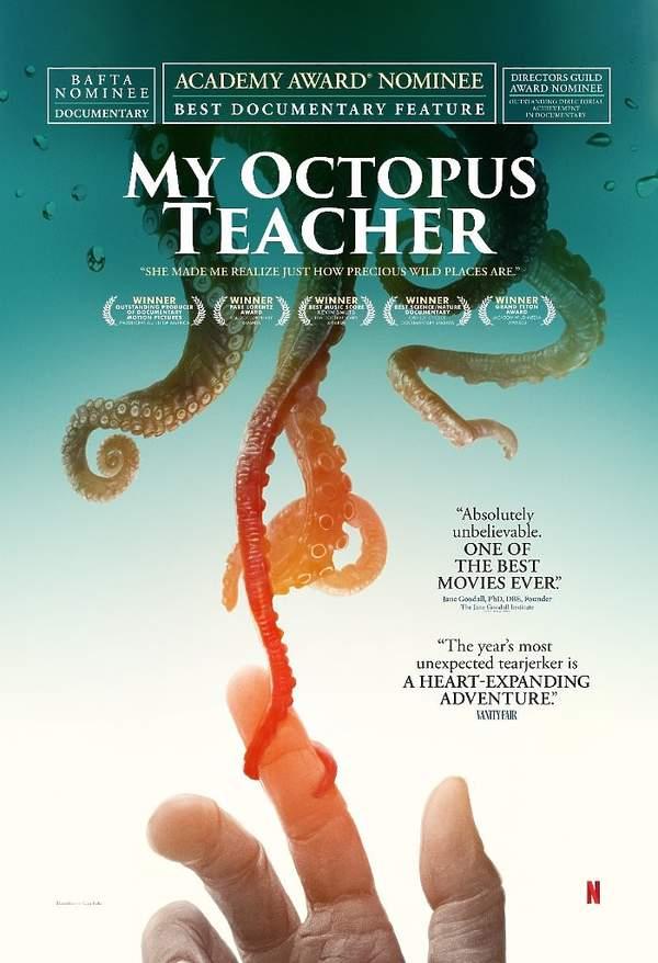 """Oscary 2021: film dokumentalny """"Czego nauczyła mnie ośmiornica"""""""