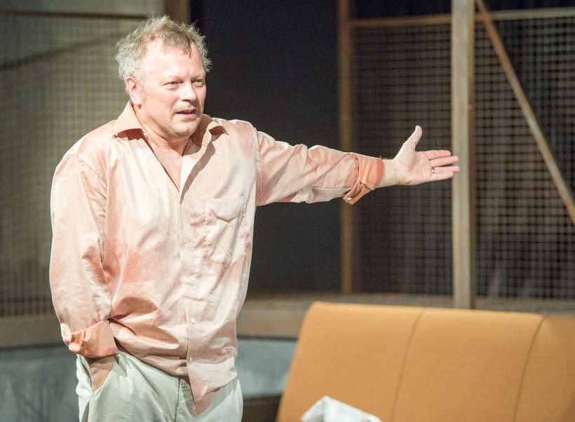 Piotr Szwedes kariera teatralna