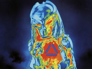 Plakat filmu Predator