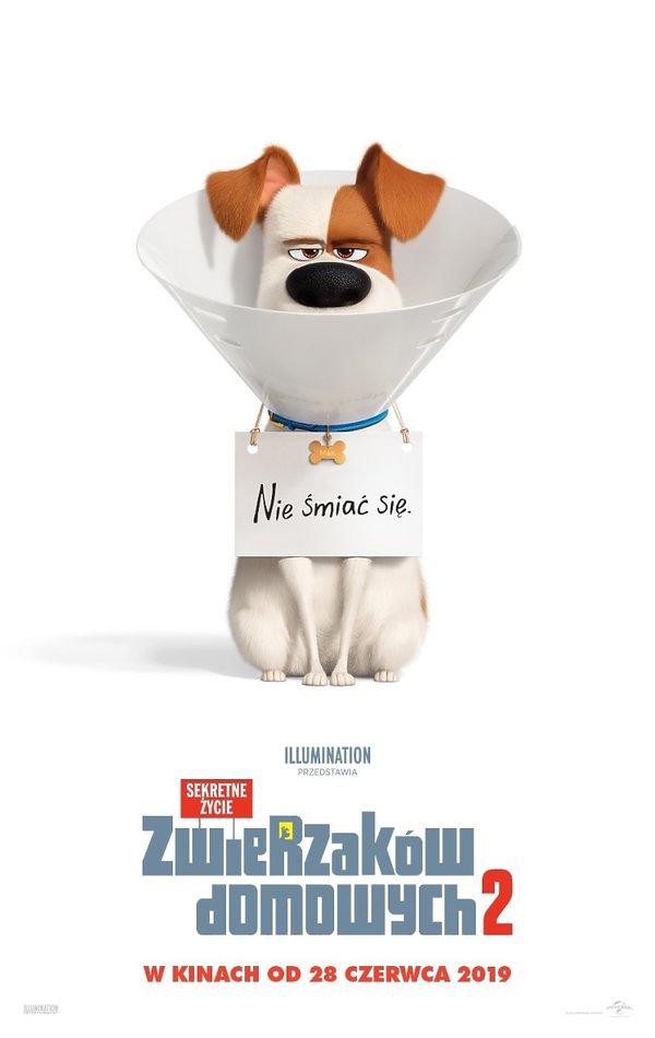 plakat filmu Sekretne życie zwierzaków 2