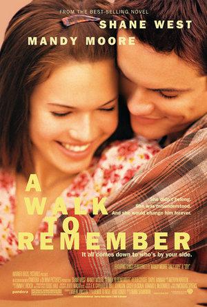 plakat filmu Szkoła uczuć, Adam Shankman
