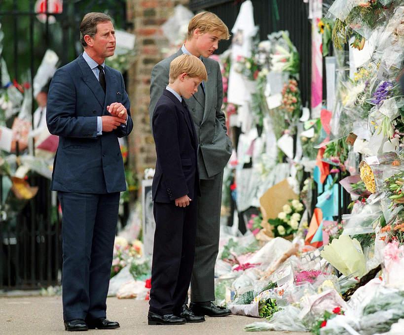 Pogrzeb Diany, Książę William, Książę Harry