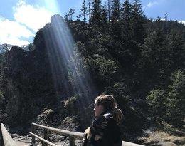 Pola Lis w górach