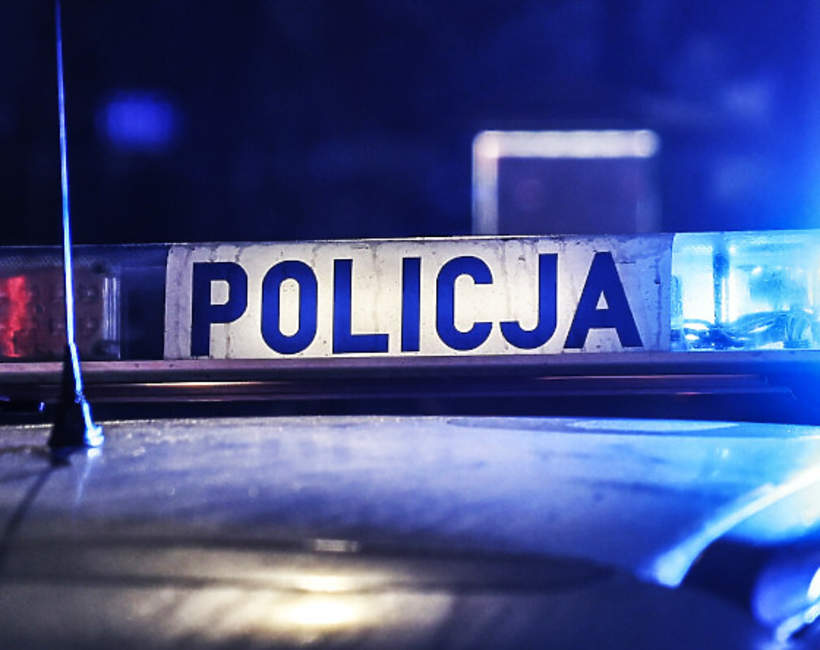 Policja, Jamnik