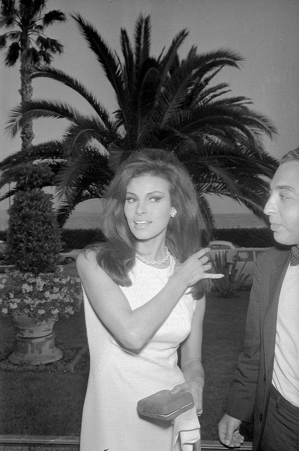 Rachuel Welch, Cannes 1966 rok