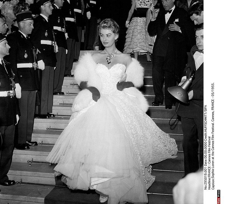 Sophia Loren, Cannes 1955 rok