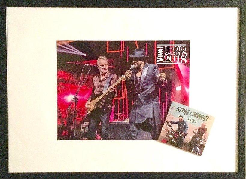 Sting, Shaggy VIVA! Photo Awards 2018, płyta, zdjęcie