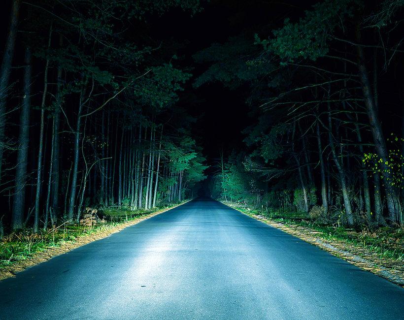 Straszny las, morderstwo w lesie, zabójstwo w lesie